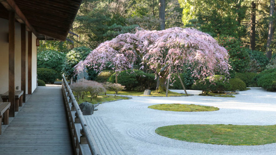 Sketching Tour In The Portland Japanese Garden Institute Of