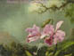 Martin Johnson Heade: A Survey : 1840-1900